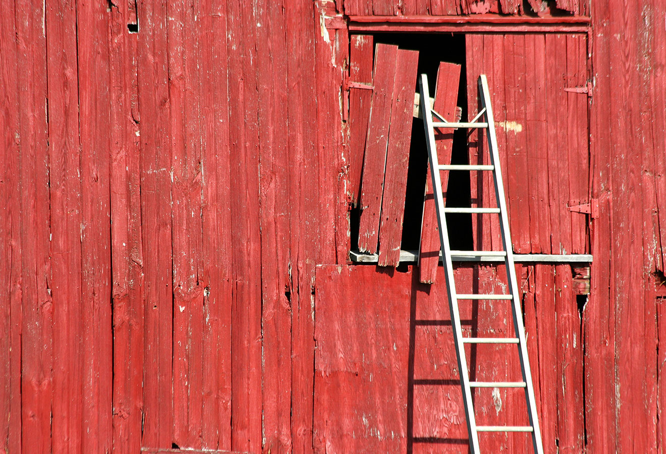 Is your ladder against the wrong wall? Episode 10